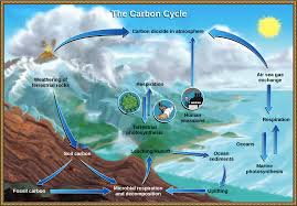 Carbon Credit 05 Unity through Solutions 2016 2020